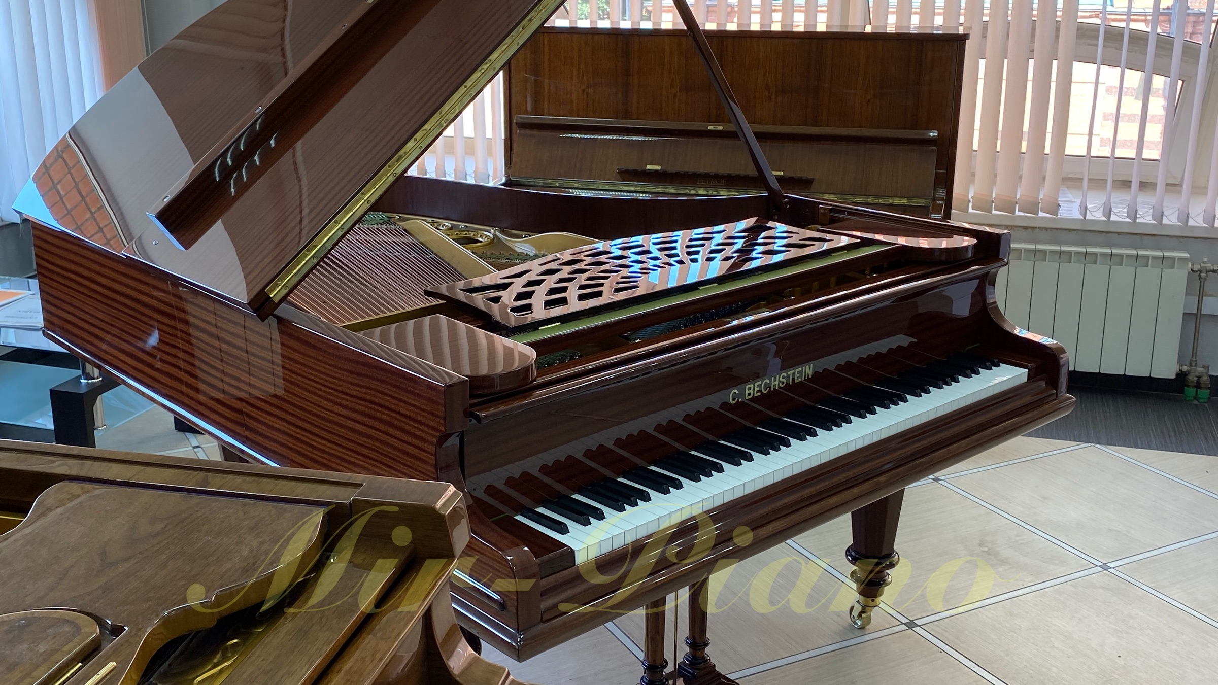 bechstein brown 1