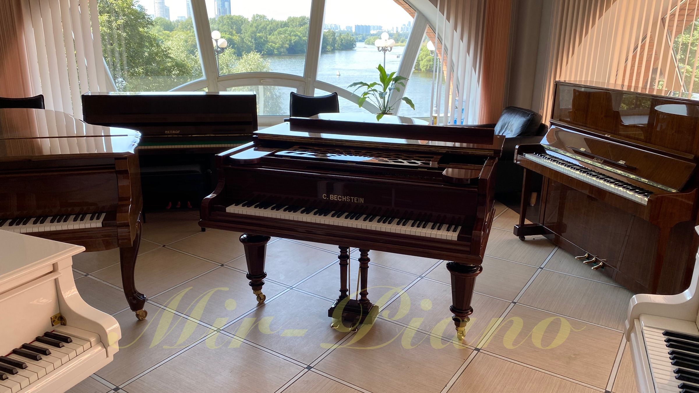 bechstein brown 8
