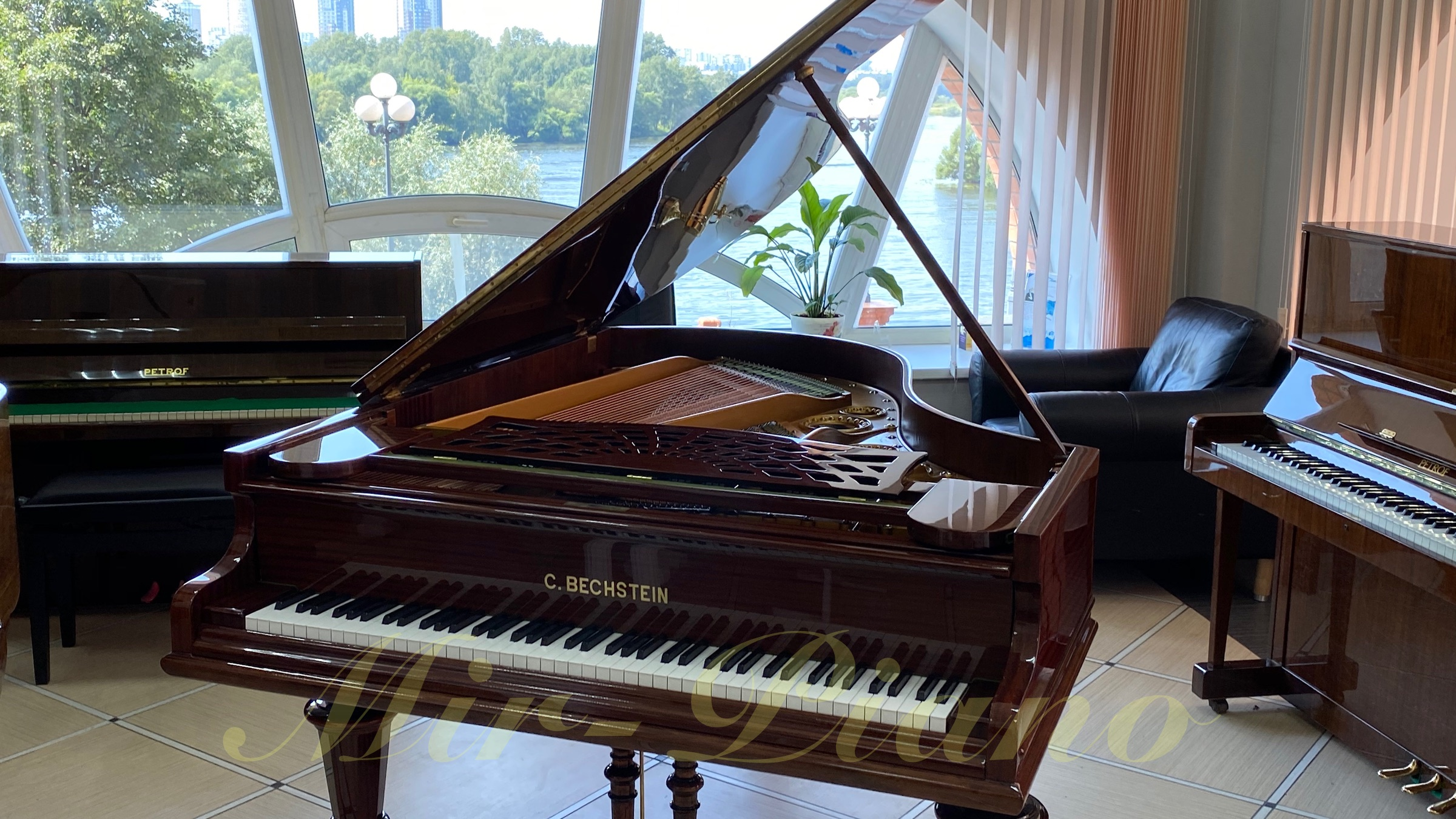 bechstein brown 9